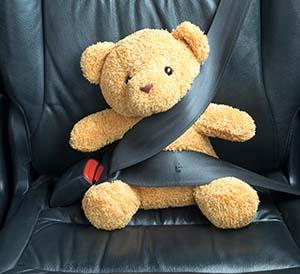 teddybear in seatbelt